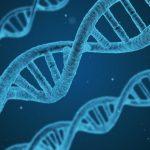 Hiponatrèmia a l'Atenció Primària: només infradiagnosticada o també infravalorada?